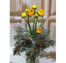 Небольшой букетик из 7 желтых ранункулюсов на флористическим каркасе из сена и пихты. При правильном уходе ранункулюсы будут стоять до 14 дней.