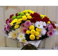 Букет веселых разноцветных кустовых хризантем (6 разный сортов) желтого, зеленого, розового, белого, красного цвета с ветками салала в упаковке из бумаги крафт с атласными лентами.